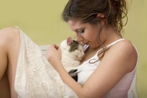 Кошка и личная жизнь