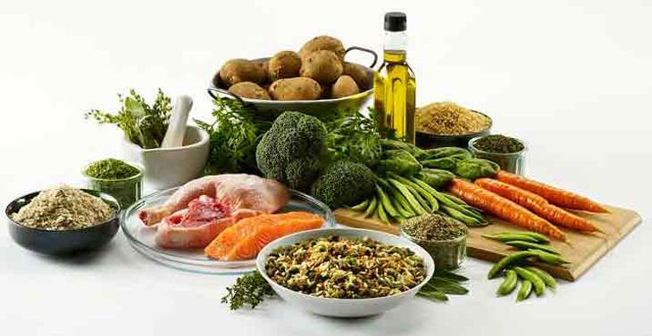 Чем кормить мейн куна для набора веса